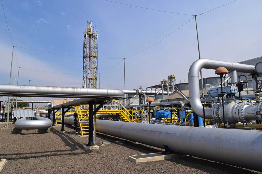 Bozza automatica - Pipeline News -  -  135