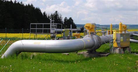 Bozza automatica - Pipeline News -  -  137