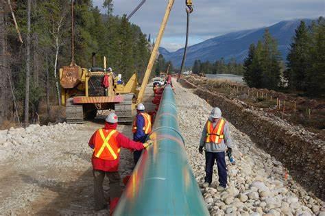 Bozza automatica - Pipeline News -  -  139