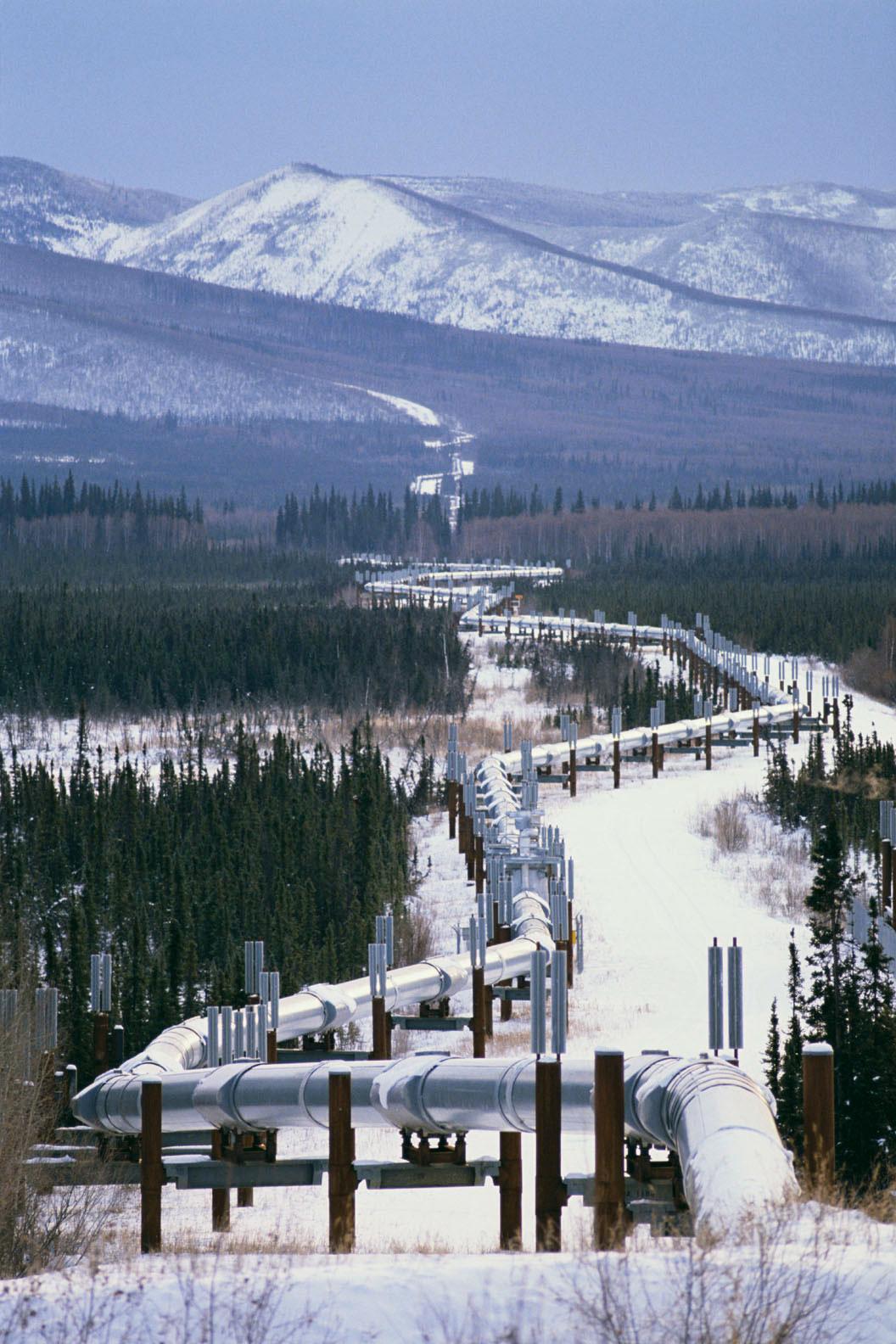 Bozza automatica - Pipeline News -  -  143