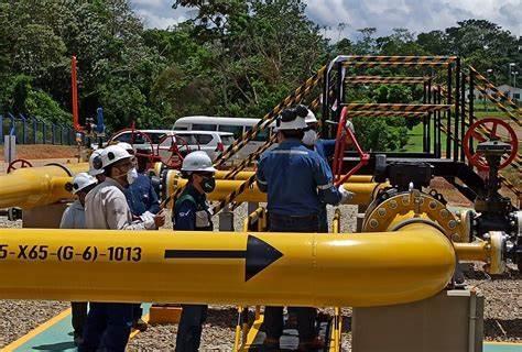 Bozza automatica - Pipeline News -  -  174