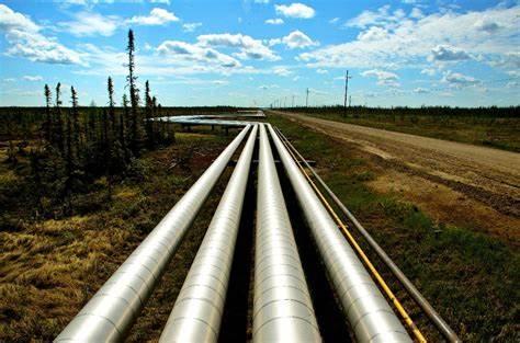 Bozza automatica - Pipeline News -  -  176