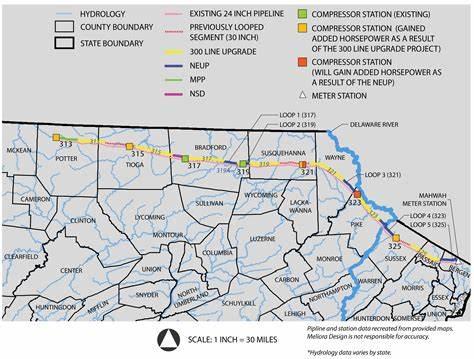 Bozza automatica - Pipeline News -  -  185